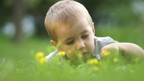 Little-Boy-With-A-Loupe-Looking-At-Flowers