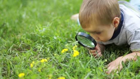 Niño-Pequeño-Con-Una-Lupa-Lupa-Mirando-Flores