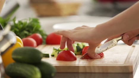 Young-Woman-Cutting-Vegetables-In-Kitchen-01