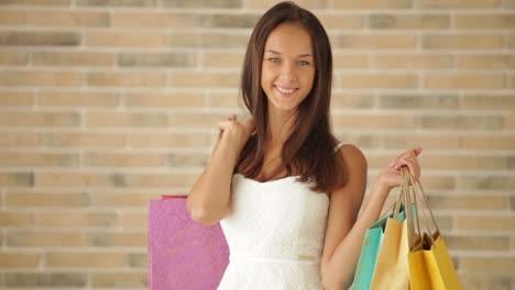 Chica-Encantadora-Posando-Con-Bolsas-De-Compras-Mirando-A-La-Cámara-Y-Sonriendo-Panorámica-01
