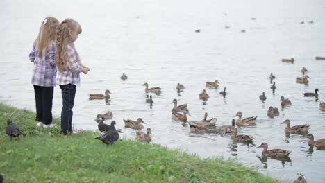 Two-Pretty-Little-Girls-At-Park-Feeding-Ducks-Turning-Around-And-Waving-Their