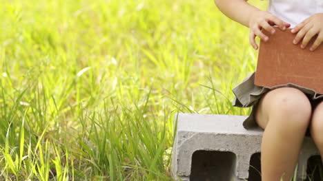 Mejores-Ladrillos-Para-Construir-Casas-Pulgar-Arriba-Ok