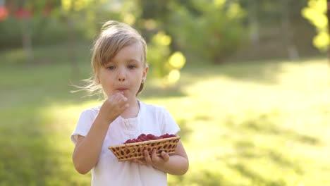 Mädchen-Isst-Himbeere-Und-Hält-Einen-Korb