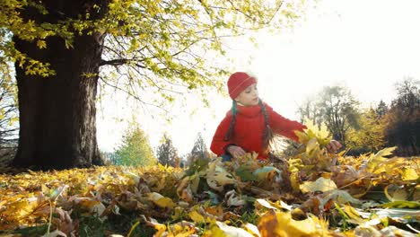 Niño-Girl-7-8-Years-Old-Collects-A-Bouquet-Of-Autumn-Leaves-In-The-Park-And