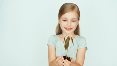 Girl-Child-Holding-A-Small-Tree-Plant-In-The-Hands-Of-On-The-White-Background