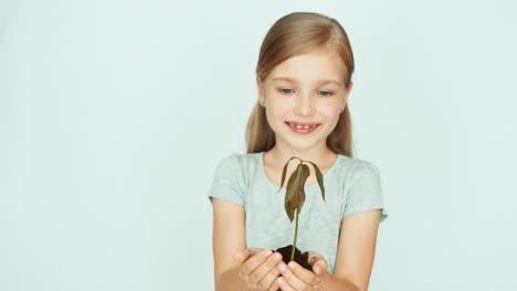 Mädchen-Das-Eine-Kleine-Baumpflanze-In-Den-Händen-Hält-Auf-Dem-Weißen-Hintergrund