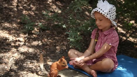 Squirrel-Feeding-From-Human-Hands-Man-Helps-The-Animal-To-Survive-In-Difficults