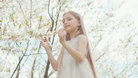 Mädchen-Im-Weißen-Kleid-In-Den-Weißen-Bäumen