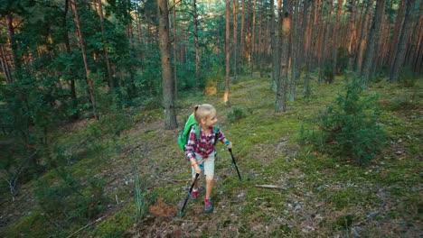 Wanderer-Geht-Im-Wald-Vor-Die-Kamera