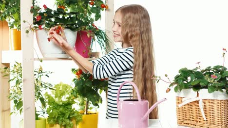 Cheerful-Blond-Girl-Carring-Of-Her-Plants-On-White-Background