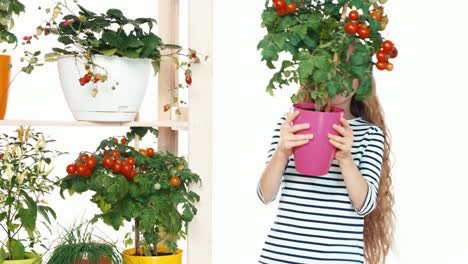 Cheerful-Blonde-Girl-Holds-Plant-Of-Cherry-Tomatoes-On-White-Background