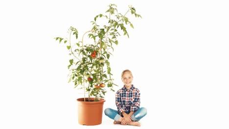 Fröhliches-Mädchen-Im-Alter-Von-8-Jahren-Das-Tomatenpflanze-Isoliert-Auf-Weißem-Hintergrund-Betrachtet