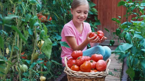 Cheerful-Girl-Holding-In-Hands-Big-Ripe-Red-Tomato-Near-Basket-Of-Tomatoes