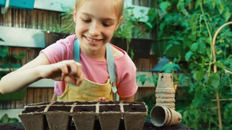 Child-8-Aged-Planting-Seeds-In-Soil-Into-A-Peat-Pot-Closeup-Shot