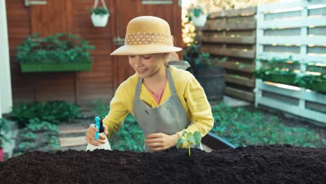 Kind-Kümmert-Sich-Um-Gemüsepflanze