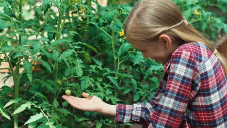 Child-Girl-Caring-About-Tomatoes-In-The-Patio
