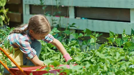 Child-Girl-Is-Working-In-The-Garden