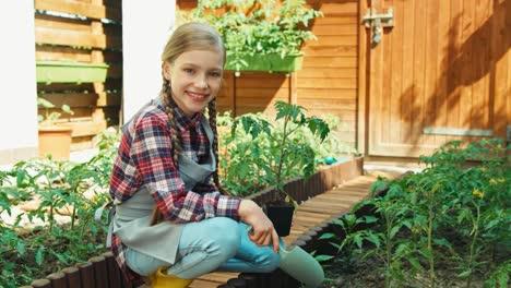 Niño-Niña-Plantar-Plantar-Plántulas-De-Tomate-Al-Suelo-En-El-Jardín