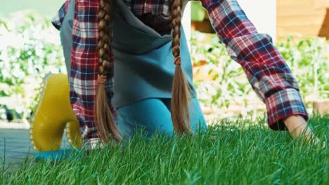 Child-Girl-Touching-Grass