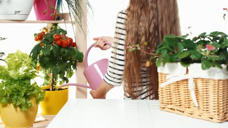 Child-Girl-Watering-Her-Vegetables-In-Pots-On-White-Background
