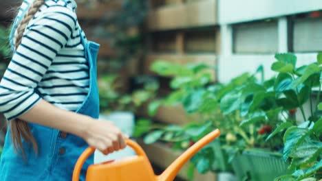 Child-Girl-Watering-Strawberry-In-The-Kitchen-Garden