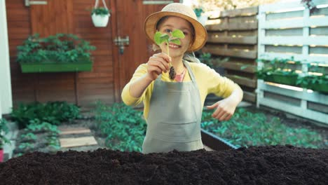 Child-Holds-In-Hand-Seedling-Of-Cucumber
