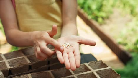 Child-Holds-Seeds-In-Her-Palm-Closeup-Shot
