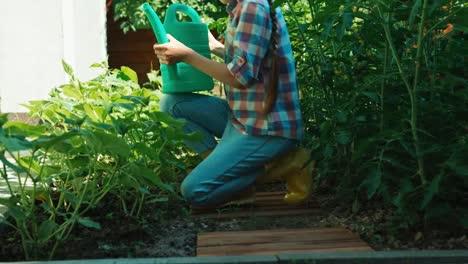 Kind-Gießt-Gurke-In-Ihrem-Gemüsegarten-Und-Lächelt-In-Die-Kamera