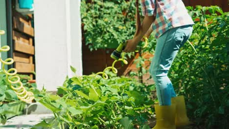 Child-Is-Watering-Cucumbers-In-Her-Garden-With-Water-From-Hose