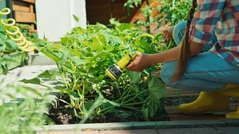 Kind-Gießt-Am-Sonnigen-Tag-Gemüse-Im-Gemüsegarten-Und-Lächelt