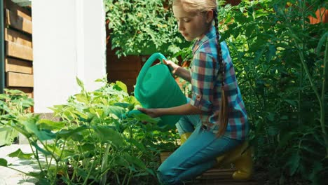 Child-Is-Watering-Vegetables-In-The-Kitchen-Garden-At-Sunny-Day