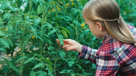 Child-Looking-Through-Magnifier-To-Plants