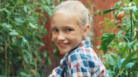 Child-Picking-Up-Tomatoes-In-Her-Kitchen-Garden