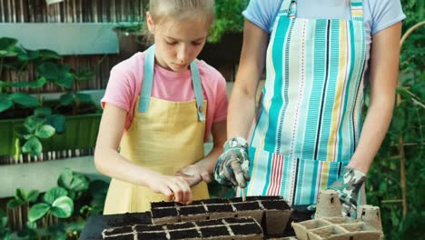 Child-Sowing-Seeds-Of-Vegetables-To-Soil
