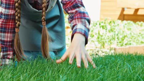 Child-Touching-Grass