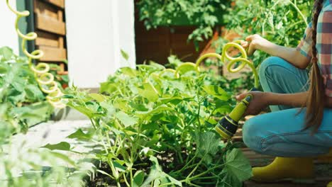 Child-Using-Watering-Hoses-In-The-Kitchen-Garden