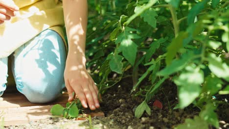 Close-Up-Shot-Child-Is-Working-In-The-Garden