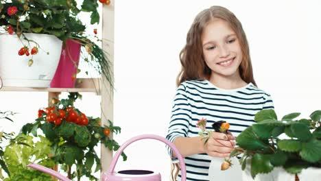 Süßes-Mädchen-Streut-Gemüse-In-Töpfen-Auf-Weißem-Hintergrund