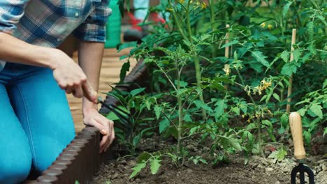 Family-Loosening-Soil-And-Watering-Plants