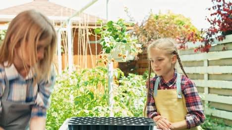 Family-Of-Farmers-Planting-Seedling