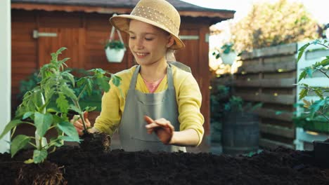 Farmer-Child-Girl-Planting-Seedling-Of-Tomato-In-The-Soil-And-Smiling-At-Camera