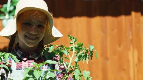Bauernmädchen-Das-In-Ihren-Händen-Sämling-Von-Tomaten-Im-Gemüsegarten-Hält