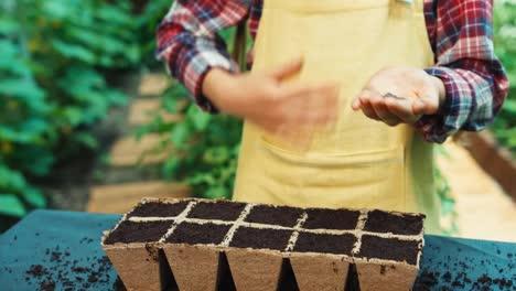 Farmer-Girl-Holds-Seeds-In-Her-Hands-For-Planting-To-Soil