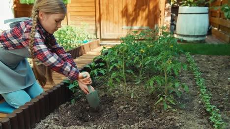 Chica-Campesina-Plantar-Vegetales-Al-Suelo-En-El-Huerto