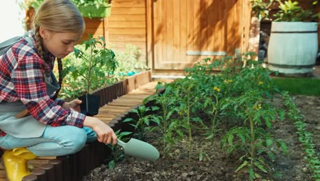 Chica-Campesina-Plantar-Verduras-Al-Suelo