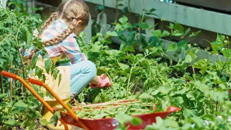 Farmer-Girl-Working-In-The-Garden