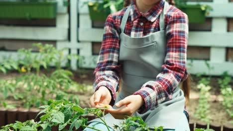 Bauer-Mit-Gemüsepflanzen-Im-Küchengarten-Kind-Lächelt-In-Die-Kamera