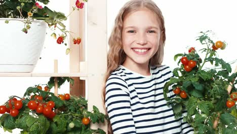 Girl-9-Aged-Holds-Pot-Wit-Tomato-Isolated-On-White-Zooming-Shot