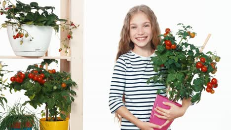 Girl-9-Aged-Holds-Pot-Wit-Tomato-Isolated-On-White