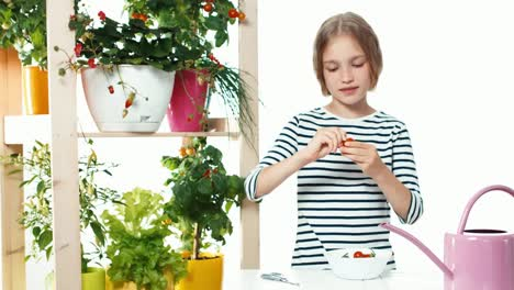 Girl-Eating-Cherry-Tomatoes-On-White-Background-Dolly-Shot